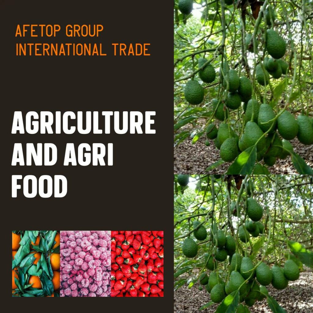 Agriculture and Agrifood